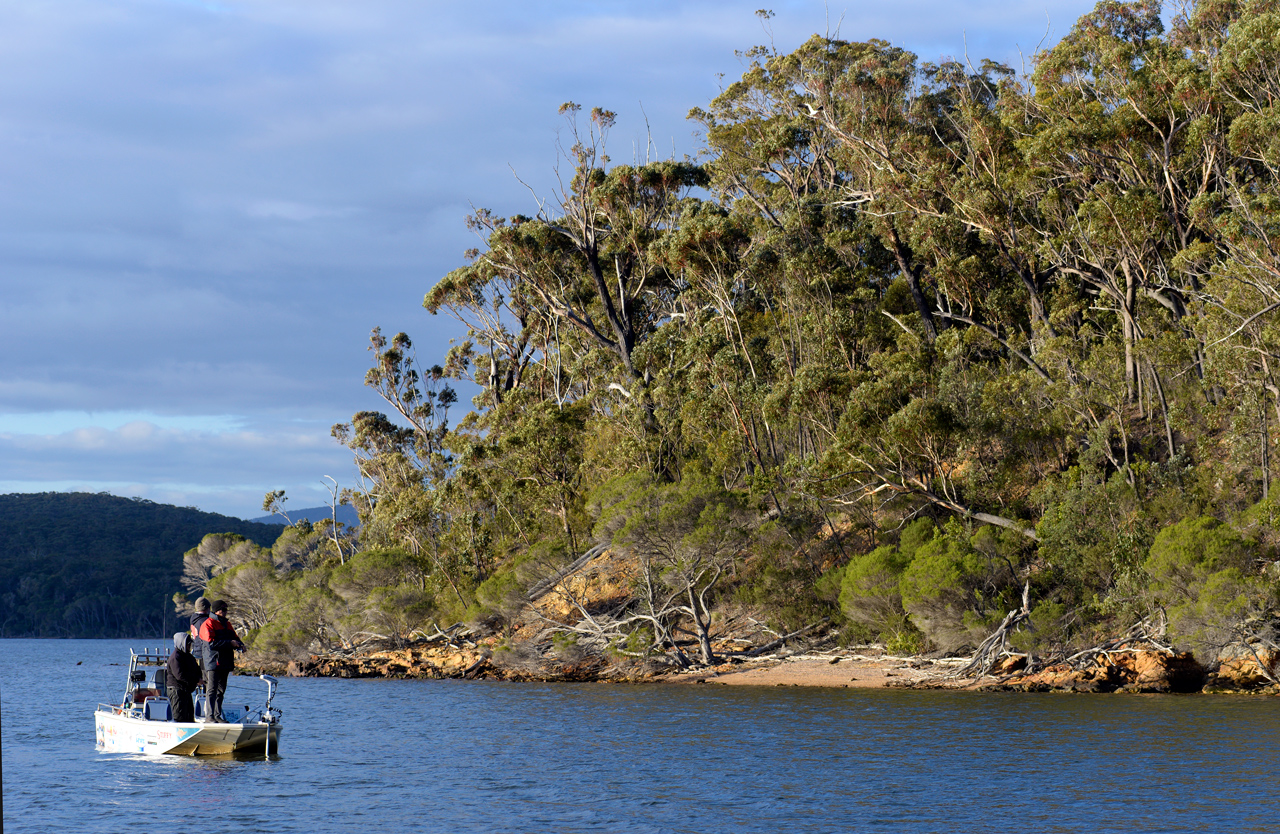 There's so much water to explore at Mallacoota... and nearly always a sheltered corner somewhere, even in the strongest winds.
