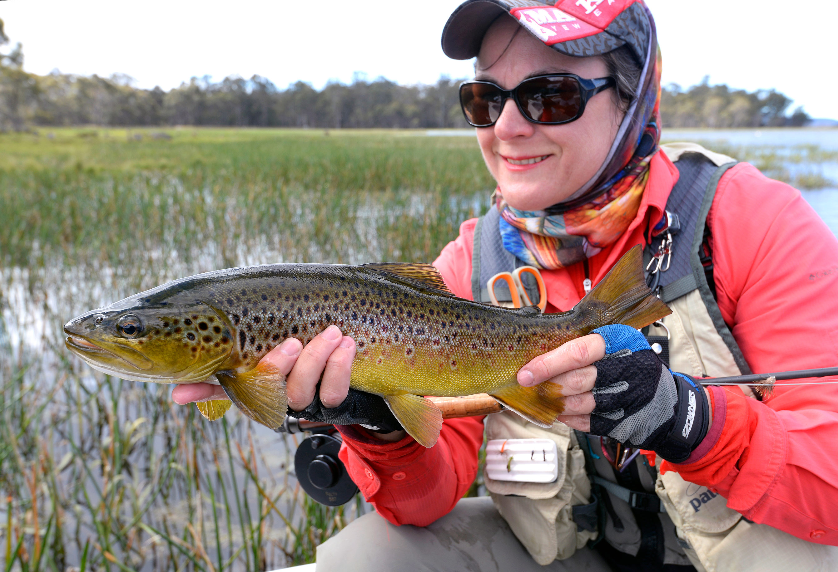 Jo with a lovely Penstock brownie taken in the margins on a single dry fly presented on a long, fine tippet.